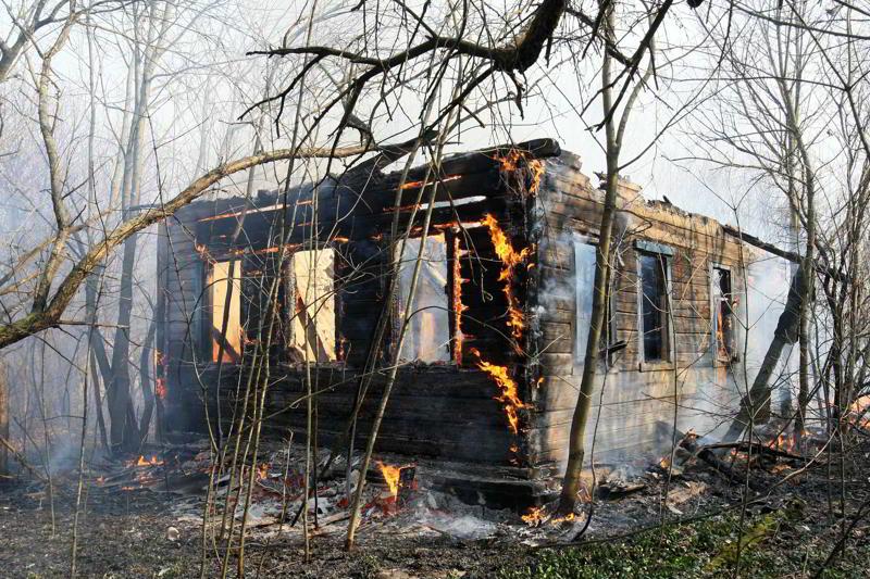 Оценка последствий пожаров